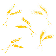 Concept for organic products label, harvest and farming, grain, bakery, healthy food.