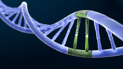 DNA_Digitales_Segment