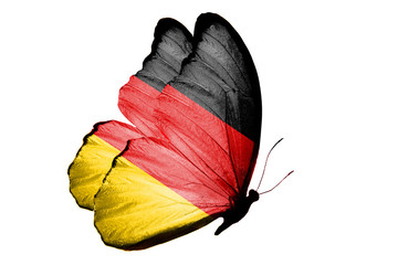 Бабочка с флагом Германия на крыльях изолирована на белом фоне