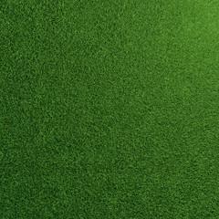 Fußball Rasen Textur mit grünem Gras