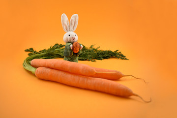 Easter Bunny with Carrot stock images. White rabbit toy. Easter bunny on a orange background. Easter rabbit with egg. Spring decoration images. Easter concept. Bunny with Carrot