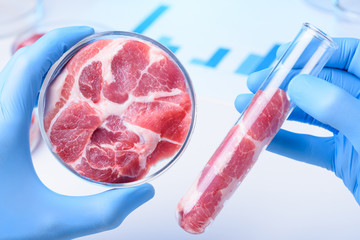 Raw meat in scientist hands. Meat in laboratory test tube and in lab Petri dish, cultured clean laboratory meat concept.