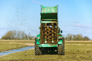 Tractor with manure spreader on the field - 1284