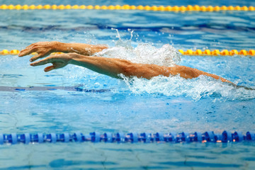 hands athlete swimmer swimming butterfly stroke in pool competition