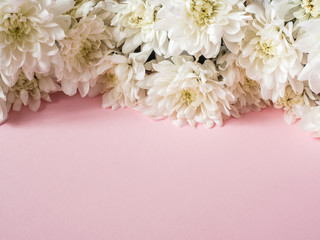 Bouquet of multicolored chrysanthemums on a pink background Place for text