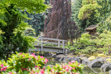 "Kanada - Kasugai Japanese Garden ""Brücke über Bachlauf"""