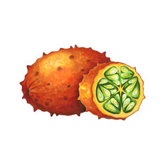 Kiwano fruit on a white background. Sketch done in alcohol markers