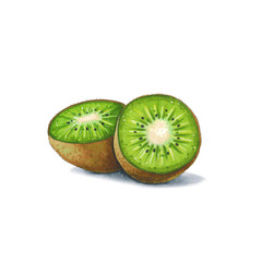 Kiwi fruit on a white background. Sketch done in alcohol markers