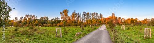 Pano Naturpark Bislicher Insel Bei Xanten Im Herbst Stockfotos Und