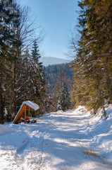 Carpathian Mountains. Winter landscape of the Carpathian mountains on a Sunny day