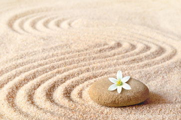 Foto op Plexiglas Stenen in het Zand stones and white flower on the sand with circles
