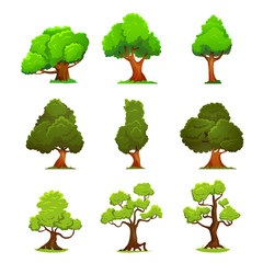 Green trees illustartion isolated on white. Nature and ecology, outdoor growing sign. Deciduous trees