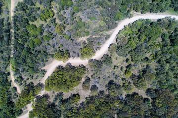 Australia, Landscape with road through Kangaroo Valley
