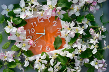 Bright orange wall clock with white numbers and silver arrows surrounded by luxurious multiple white flowers of apple tree branch.