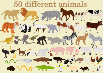 A large set of different animals on a light background