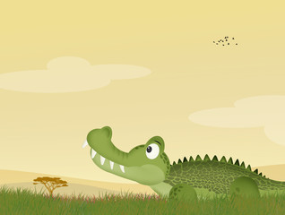 illustration of alligator in the grass