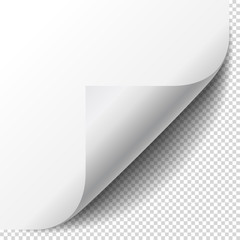 Blank page with curled corner and soft shadow. Corner of sheet of paper. Realistic vector illustration isolated on transparent background, eps 10.