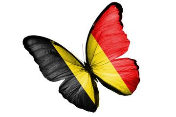 Бабочка с бельгийским флагом на крыльях, изолирована на белом фоне