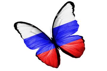 Бабочка с Российским флагом на крыльях, изолирована на белом фоне