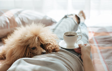Young woman is resting with a dog on the bed at home with cup of coffee. Breakfast.