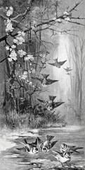 Blaumeisen beim Baden im Wald - 197648074