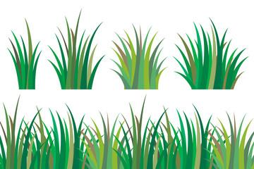 Fragment of a green grass. Bush of fresh grass of various shapes