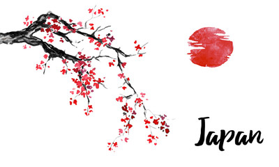 Wall Mural - Japan traditional sumi-e painting. Sakura, cherry blossom. Indian ink illustration. Japanese picture.