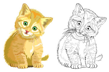 Colorful and black and white pattern for coloring. Illustration of cute kitten. Worksheet for children and adults. Vector image.