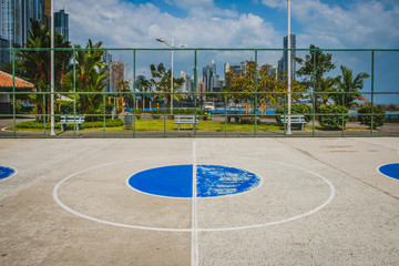 basketball court center circle with park and skyline background