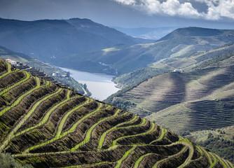 Das Douro-Tal im Norden von Portugal