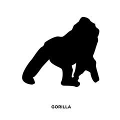 gorilla silhouette on white background, in black