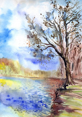 The tree on the shore of the pond, watercolor landscape in an expressive manner.