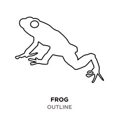 frog outline on white background