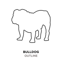 bulldog outline on white background