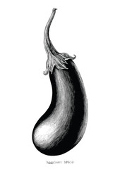 Eggplant hand drawing vintage engraving illustration on white background