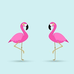 Flamingo bird illustration design on background