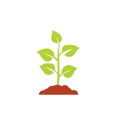 Seedling icon vector, growing tree, green agriculture