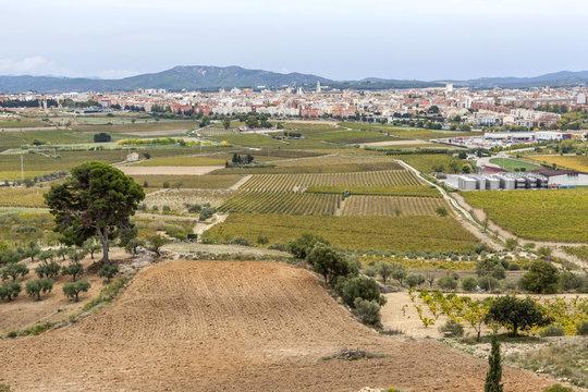 General view, Penedes wine region, at background, city of Vilafranca del Penedes, Catalonia, Spain.