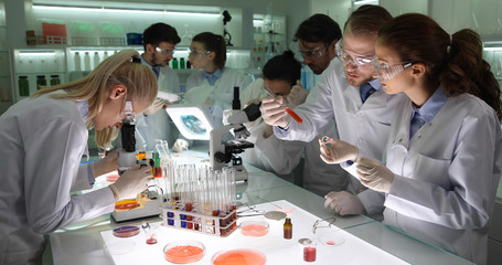 Lab Team of Forensics Science Researchers Cooperation Talking and Working in Laboratory Room on Science Project