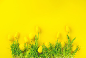 Fotoväggar - Easter background. Bright yellow eggs and vivid spring blooming tulips and fresh grass over yellow background. Easter backdrop