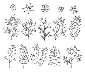 A set of hand-drawn doodle cartoon plants. Vector floral design elements