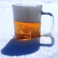 beer snow sun ight spring day