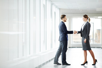 Young successful business partners shaking hands after negotiation and signing contract