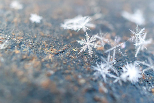 close-up of snowflakes on metallic slightly rusty texture background, winter cold