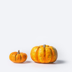 Two ripe pumpkins on white background, front view, copy space for text