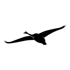 Vector image of a silhouette of a swan bird in flight