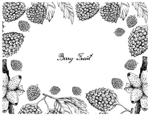 Hand Drawn Frame of Balloon Berries and Medinilla Fruits