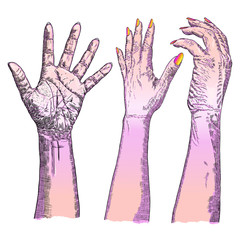 Various gestures of human hands. Hand drawn female hands in different situations isolated on white background. Set of design elements. Vector.