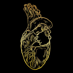 Heart in flesh tattoo concept. Anatomic human heart Symbol of love, Valentine's day heart t-shirt design. Vector