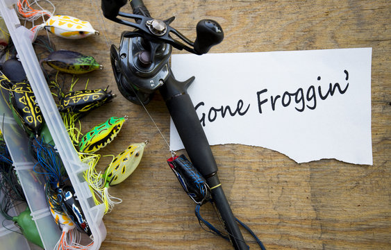 Hollow body frogs for bass fishing